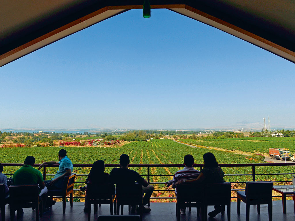 From Sula Vineyards' restaurant, visitors can see grapevines stretching towards the Gangapur reservoir. Photo by: Punit Paranjpe/Stringer/AFP/Getty Images