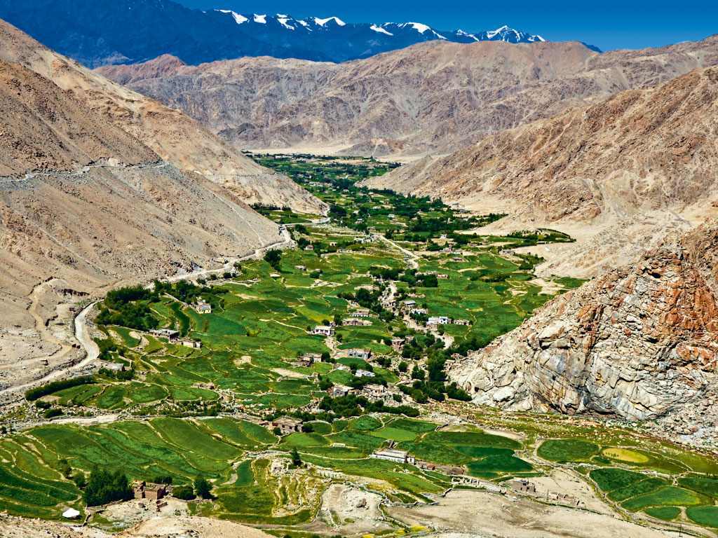 Once an arid cold desert, the terrain of Ladakh is now interspersed with patches of green thanks to an agroforestry programme run jointly by locals and the Indian armed forces. A three-hour drive from Leh's Grand Dragon Hotel to the Lamayuru Monastery is sensationally picturesque with green willows and ochre-coloured mountains surrounding quaint villages. Photo by: Kounteya Sinha