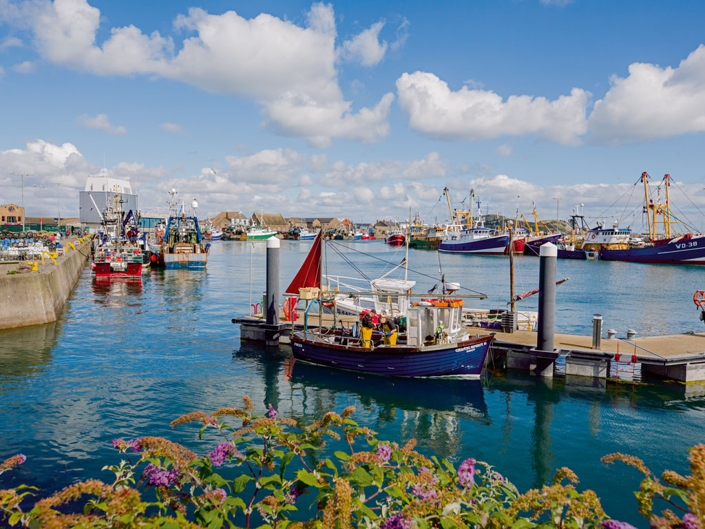 Just a 25-minute DART train ride from the capital, the coastal village of Howth offers Dubliners sea breezes, cliff walks, and locally caught seafood.