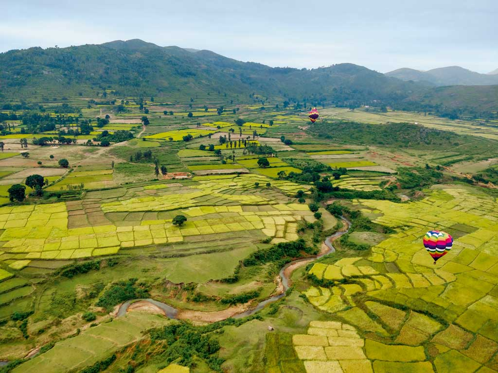The hot air balloons sailed over fields of paddy, flowers and spices in the Araku Valley.
