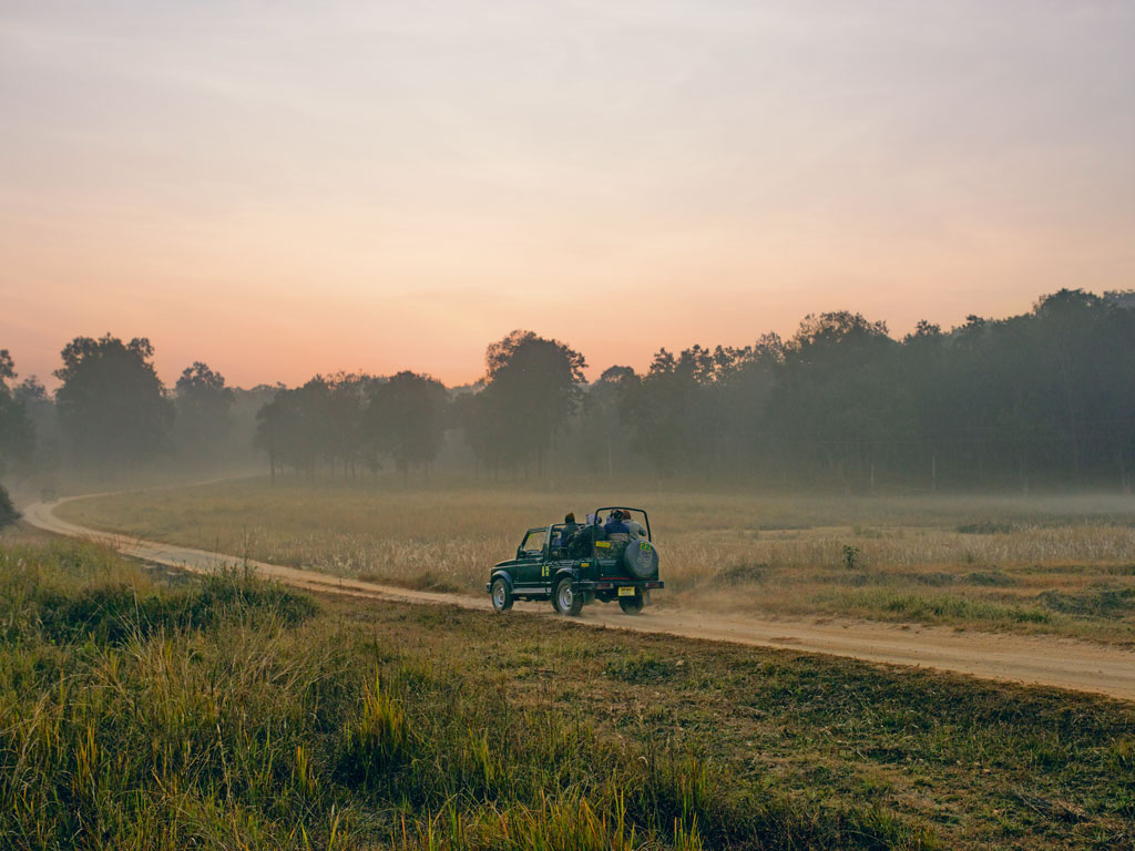Although summer is the best time for sightings at Kanha, mornings in winter can be stunningly picturesque.