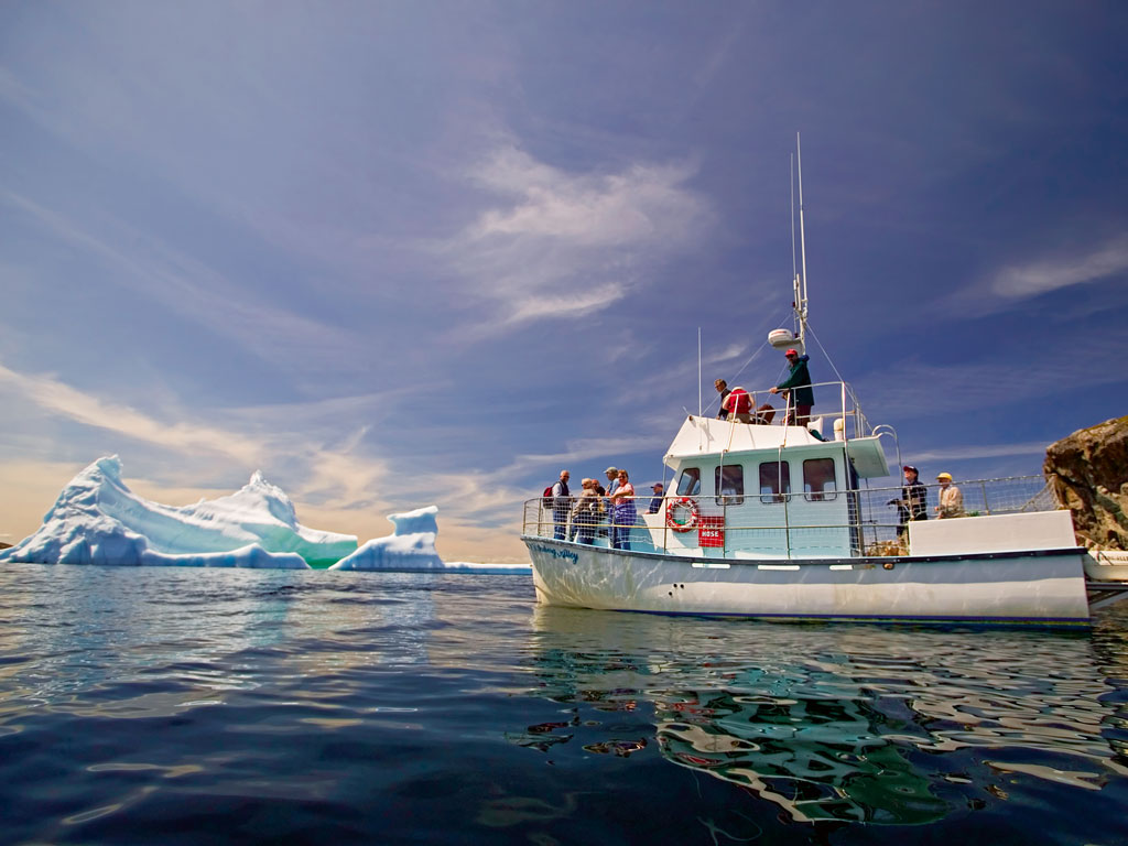 Daily boat rides are the best way to view giant icebergs up close in Twillingate Islands, Canada. Photo by: Rolf Hicker/Getty Images