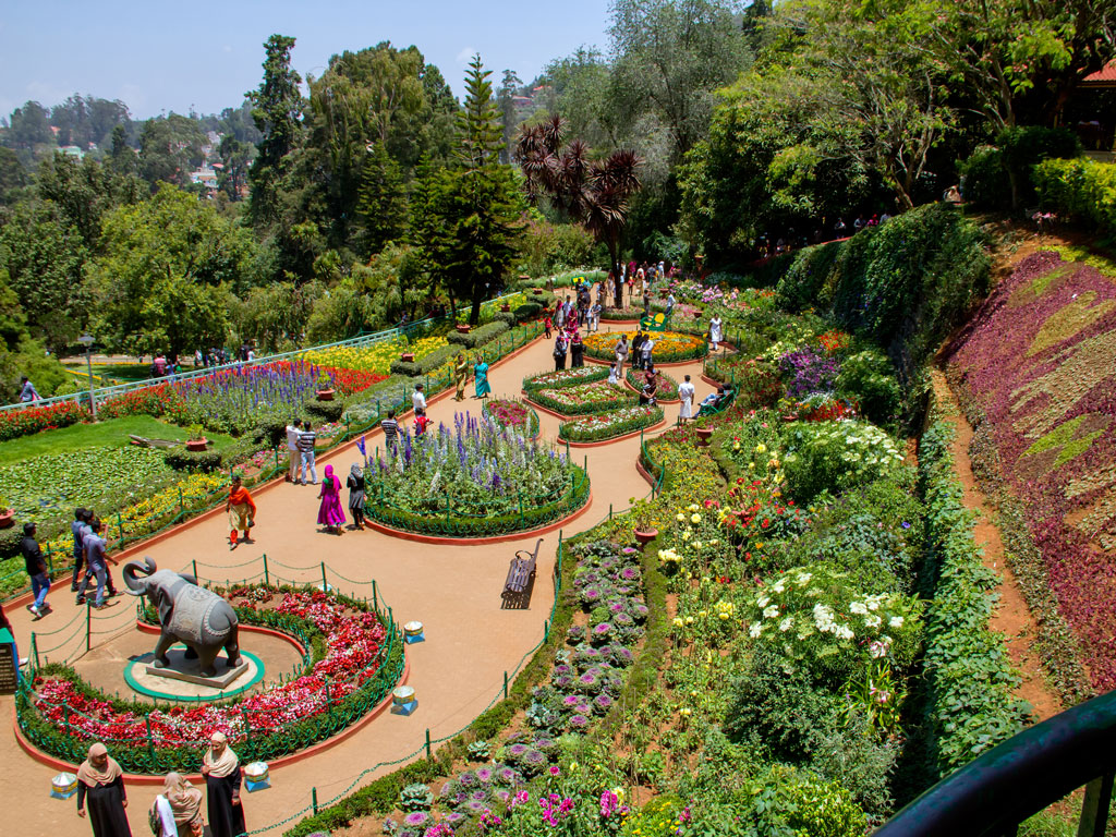 Where to go in May: Forest Fair in Himachal, Flower Power in Ooty 4
