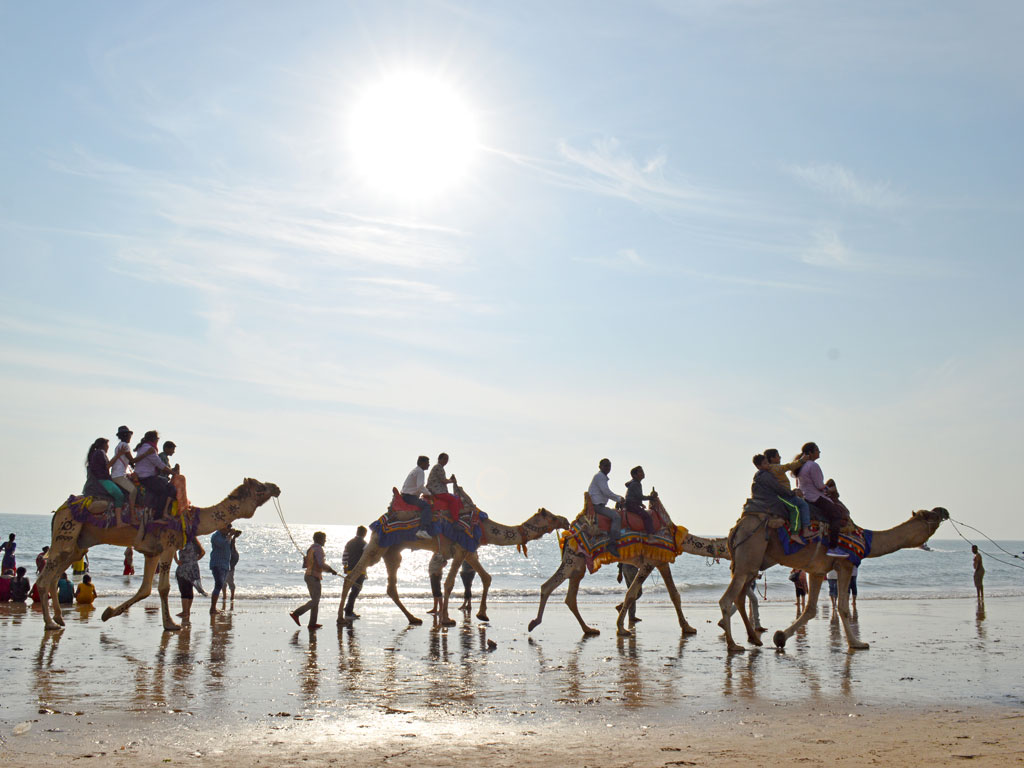 A lazy camel ride on the beach can spell the perfect summer plan, if you are not quite the water-baby. Wind and waves at a comfortable distance, the sun overhead does not seem to bother these amblers at Mandvi Beach in Gujarat.