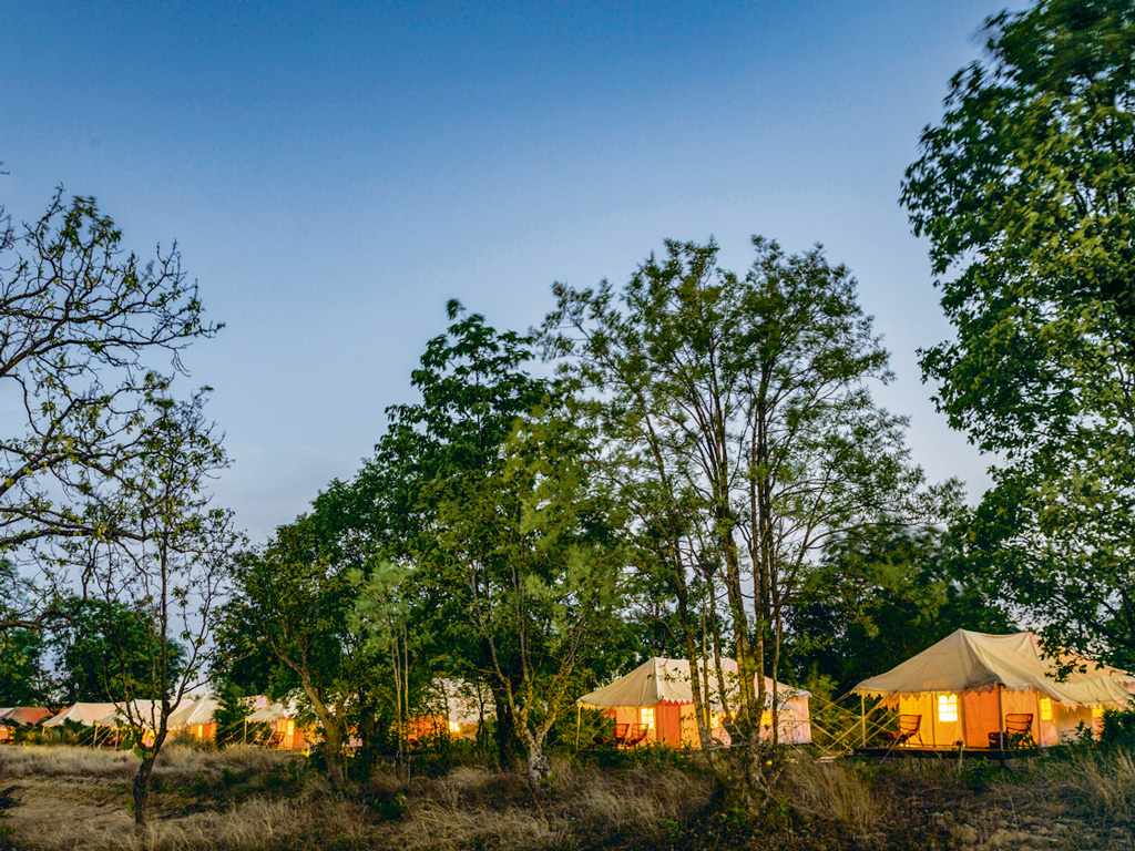 Wildlife Getaway | Being Jungle Lodged in Kanha National Park