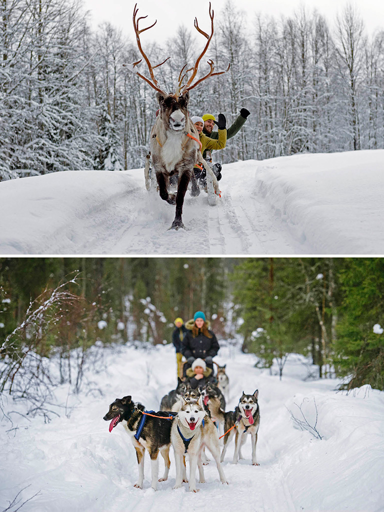 Sleigh It Like Santa in Finland 2