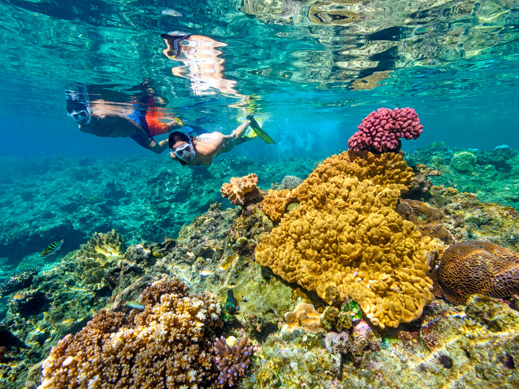 Sponsored: Adventures Galore in Fiji 2