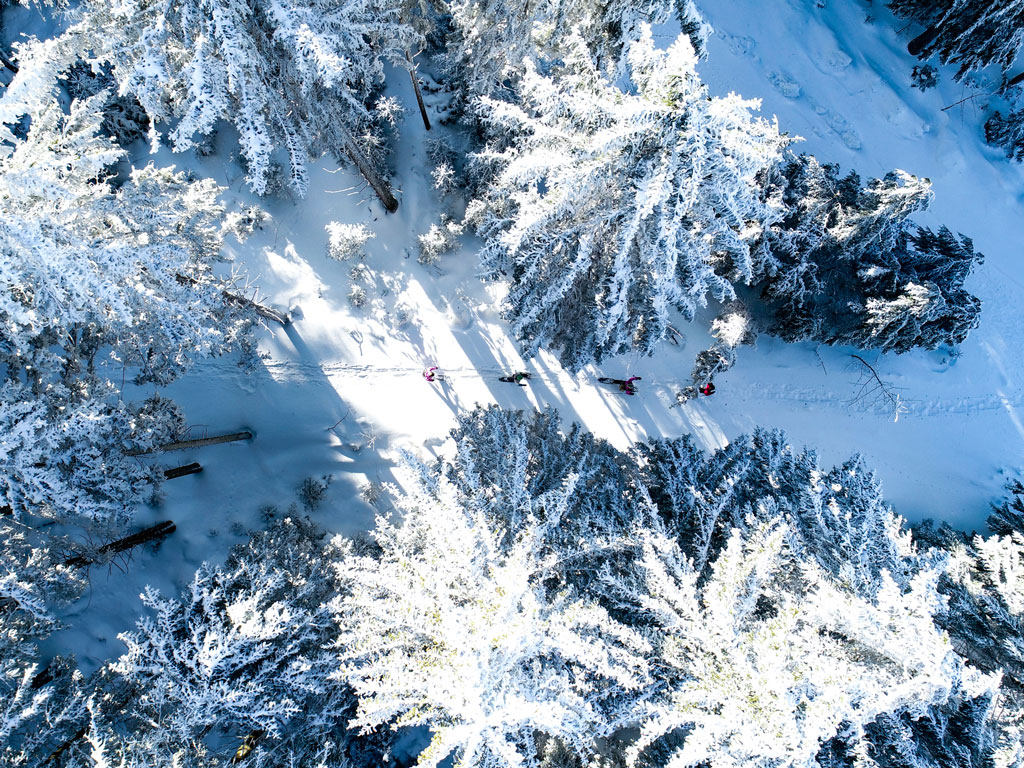 Sponsored | Magic of Winter in the Black Forest Highlands