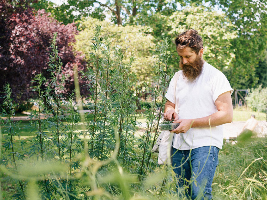 How Urban Foraging Became The New Way to Explore a City