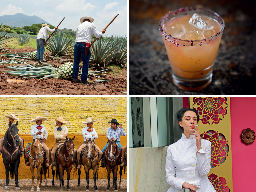 Food Fiesta: A Culinary A-Z of Mexico 6