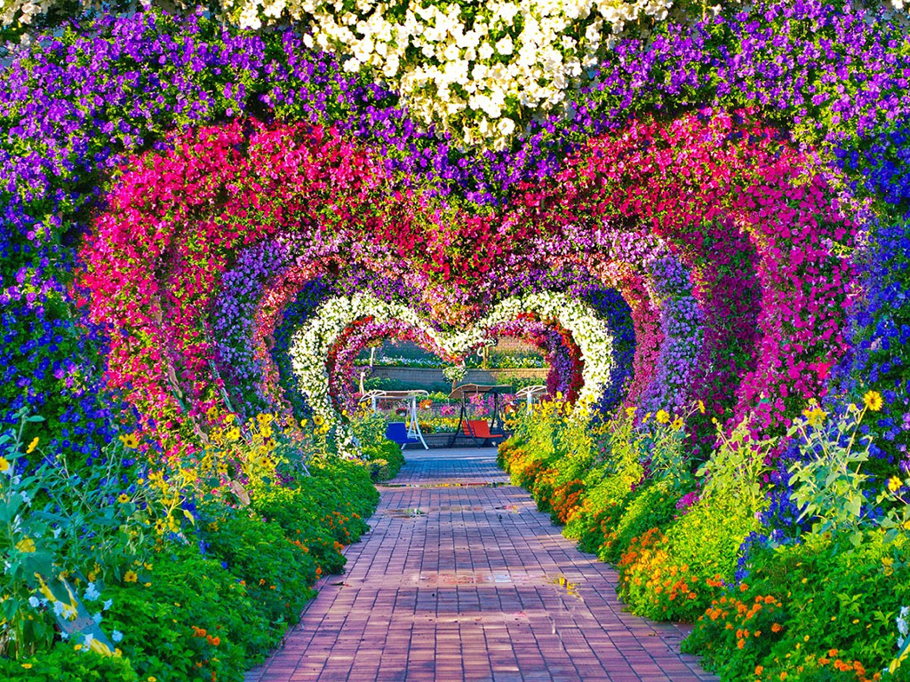Partner Content   Dubai Miracle Garden welcomes visitors for its Ninth Season 1