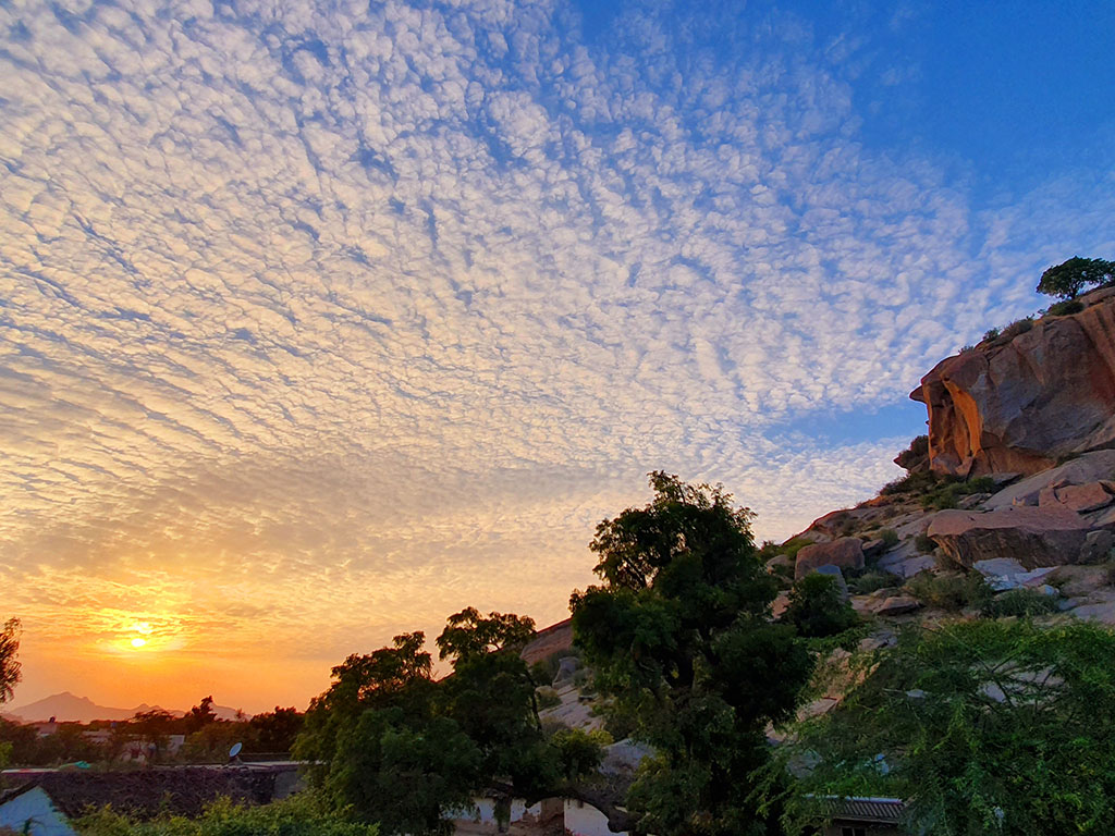 Partner Content| In Rajasthan's Land of Leopards and Shepherds at the Bijapur Jawai Lodge 3