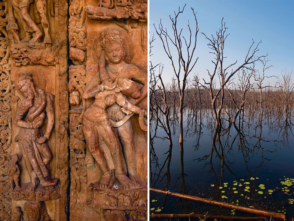 The erotic carvings (left) at the Buddha Vihara in Sirpur are not its only draw. Travellers are equally lured by the six-foot statue of Buddha touching the ground with his right hand while meditating. The iconic posture signifies the moment he attained enlightenment; At Barnawapara Wildlife Sanctuary, the sight of dead sal and sagun trees (right) standing in a lake is surreal and deeply evocative. Photos: Sanjay Austa