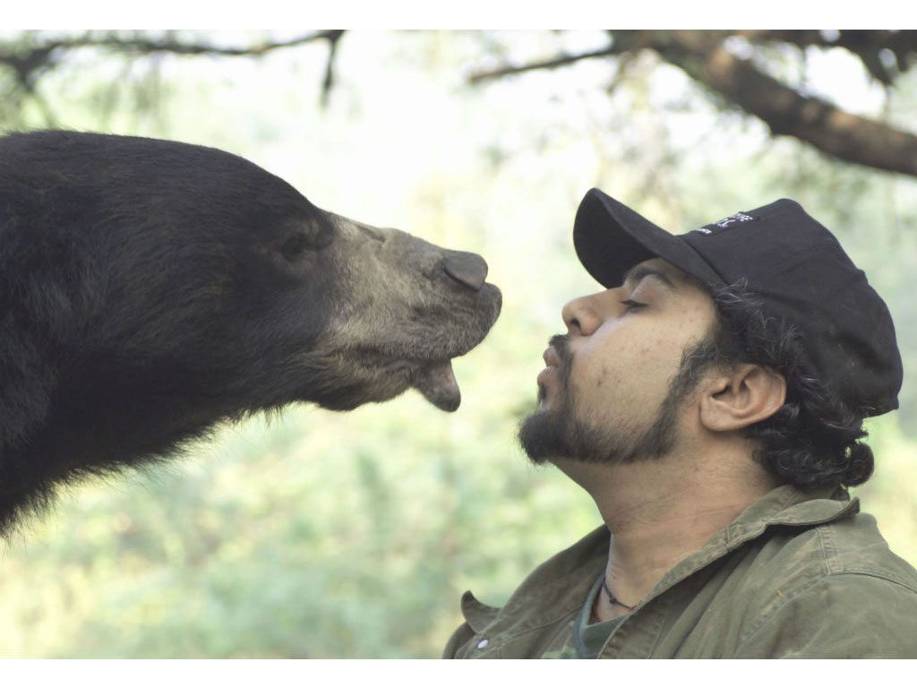 Behind the Scenes: Getting Dancing Bears off India's Streets
