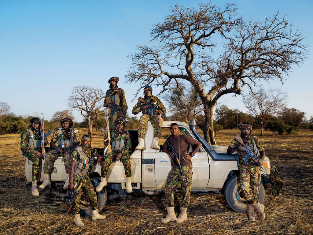 Poaching Ivory Africa