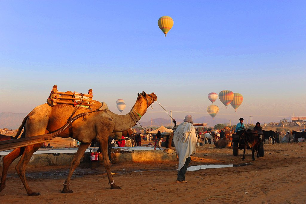 Take to the skies during the Pushkar Mela, which happens in November each year, for aerial views of undulating sand dunes, and crowds and camel at the festival.