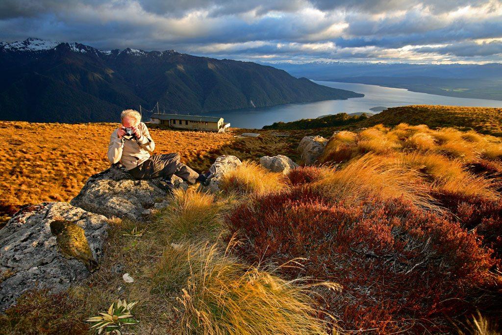 New Zealand Mountains Lakes Kepler