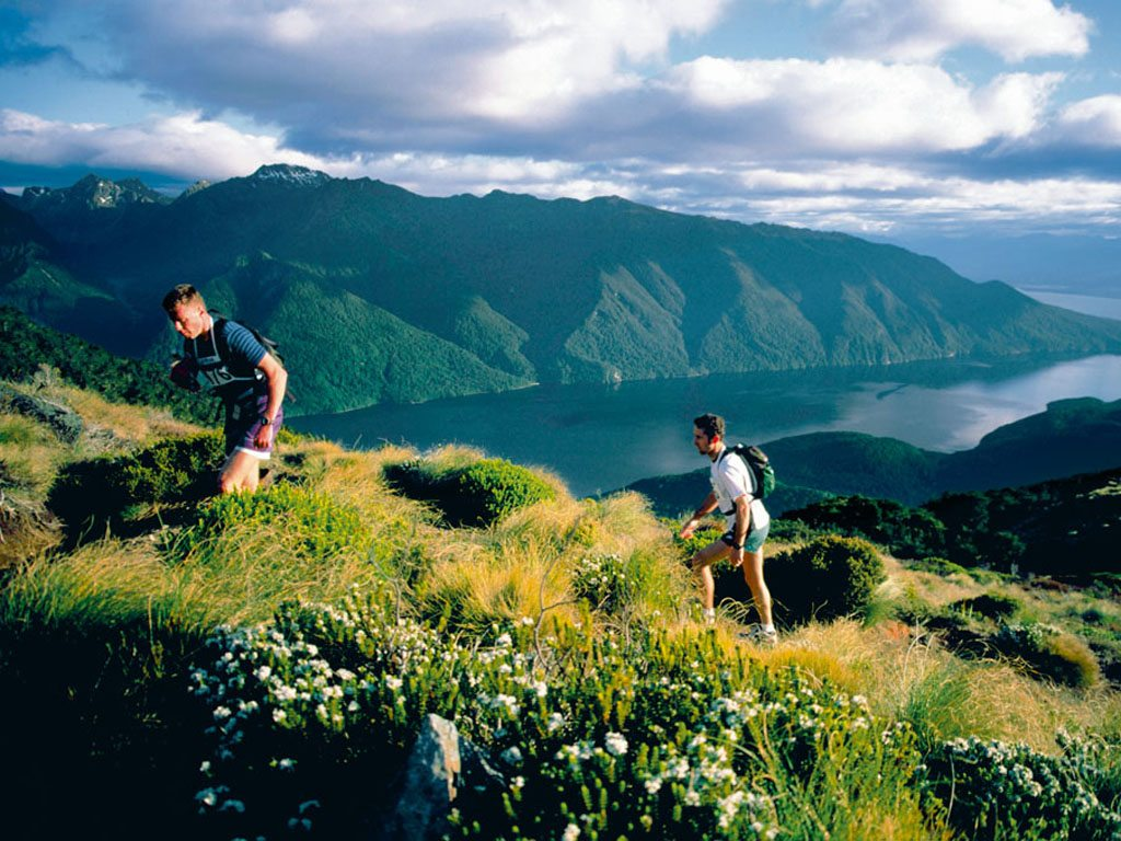 kepler trail new zealand