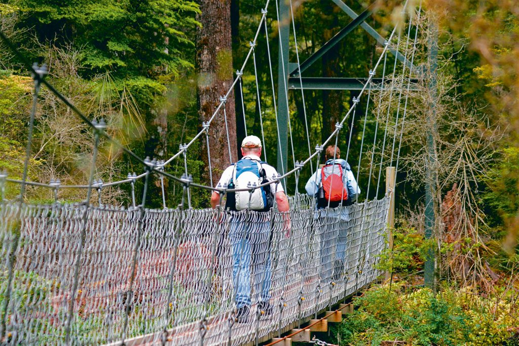 Bridge Kepler Track New Zealand