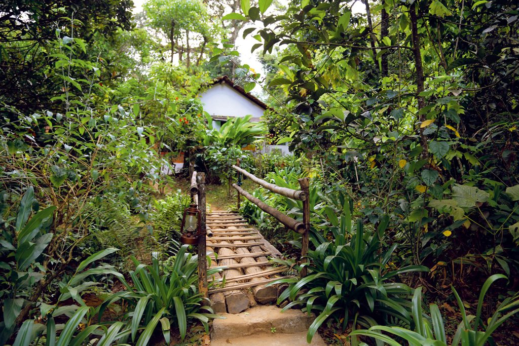 Rainforest Retreat Eco Resort Coorg