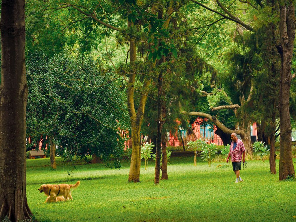Bengaluru Guide: Where to Eat, Shop and Sightsee in the Garden City