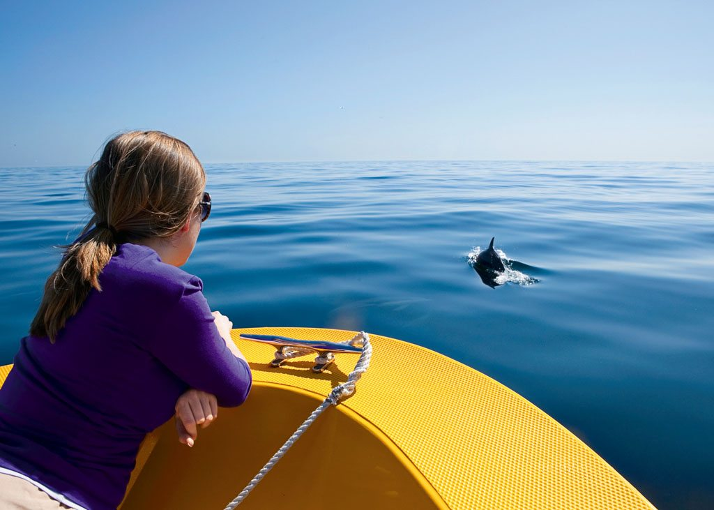 Oman Dolphins Muscat
