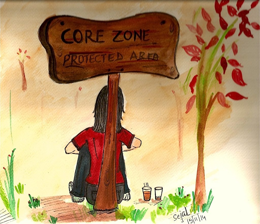 Illustration Core Zone Forest
