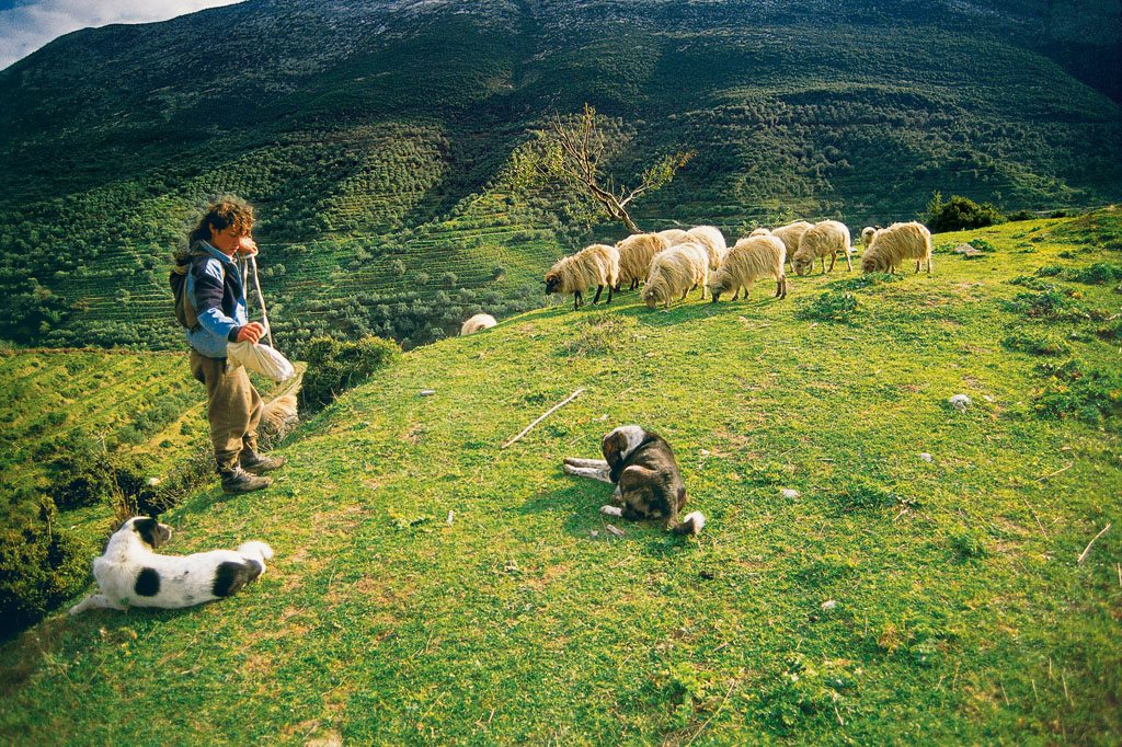 Borsh, Albania. Photo: Universal Images Group/Deagostini/Alamy/Indiapicture