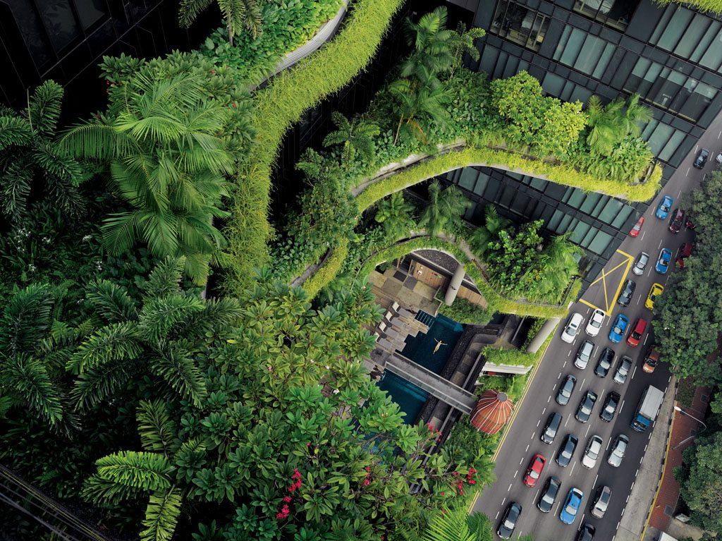 """In Singapore, which aims to be a """"city in a garden,"""" greenery cascading off a luxury hotel soothes a guest in a balcony pool—and people on the street below. """"A concrete jungle destroys the human spirit,"""" former Prime Minister Lee Kuan Yew once said."""