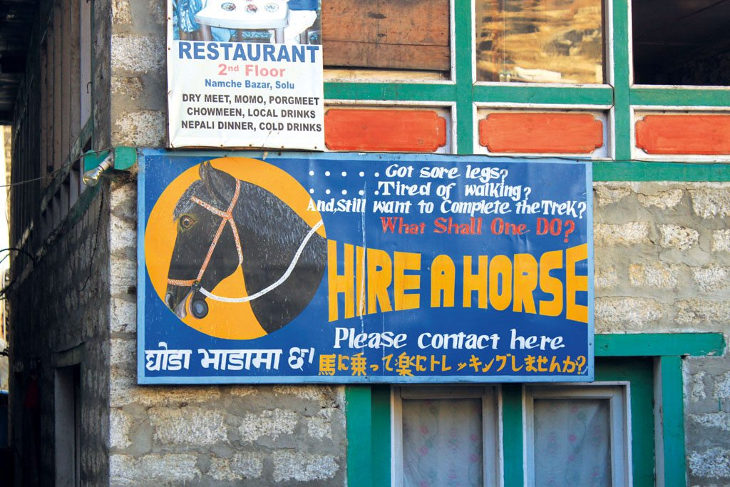 Mount Everest Trek Horse Hire