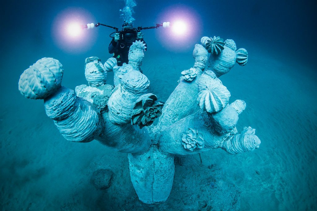 Coral can grow on sculptures