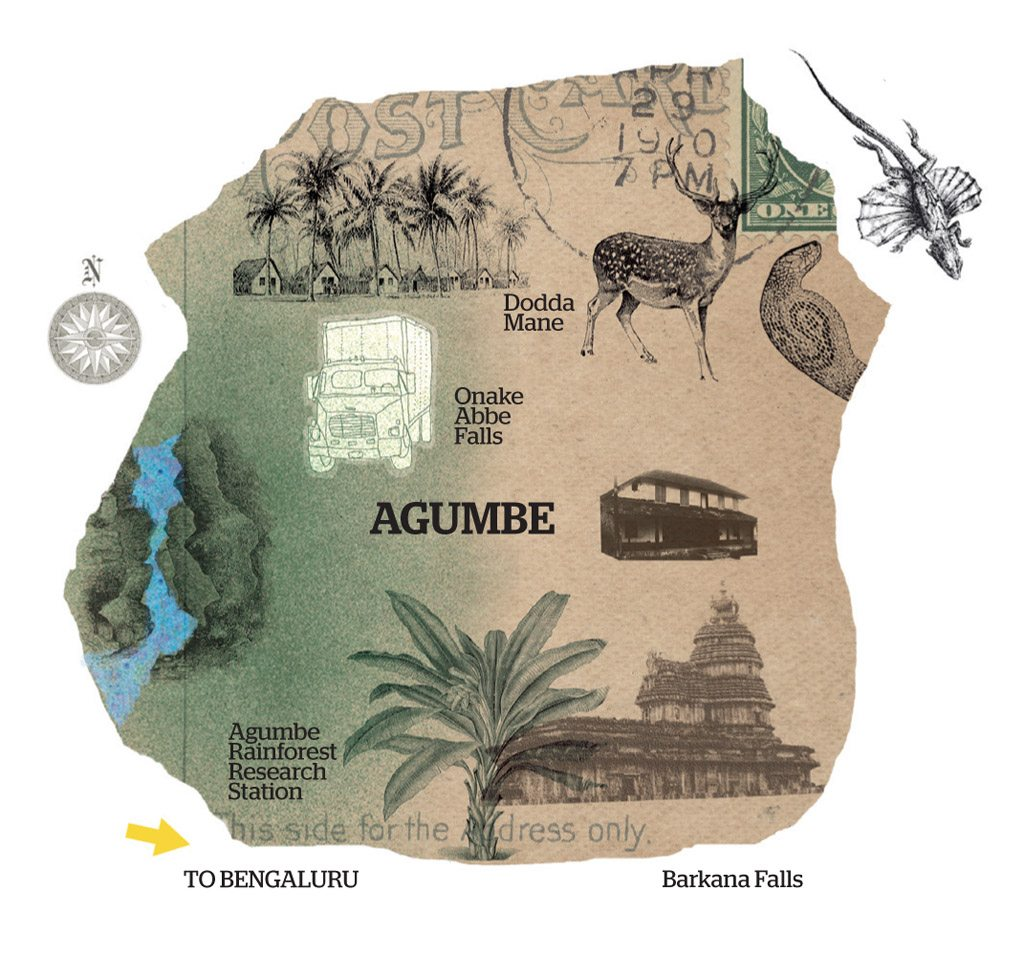 Agumbe Map gives you a glimpse of the creatures in the surrounding