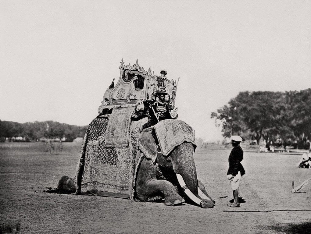 His Eminence, The Viceroy's Elephant, Delhi Durbar
