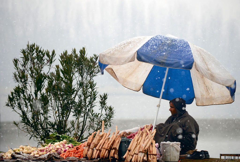 Vegetable Seller Umbrella Jammu and Kashmir