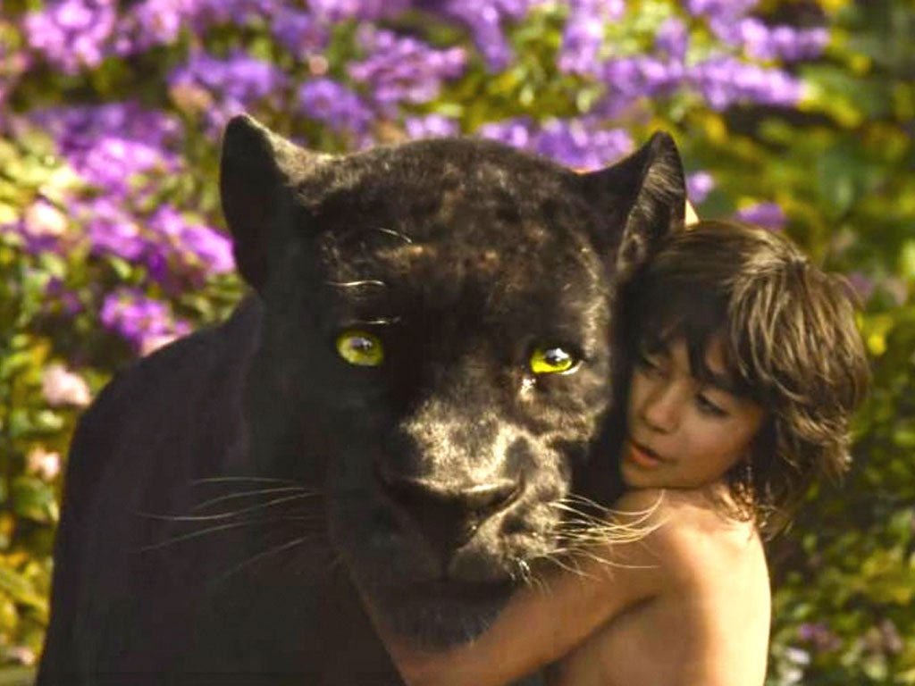 Jungle Book Bagheera Black Panther Karnataka