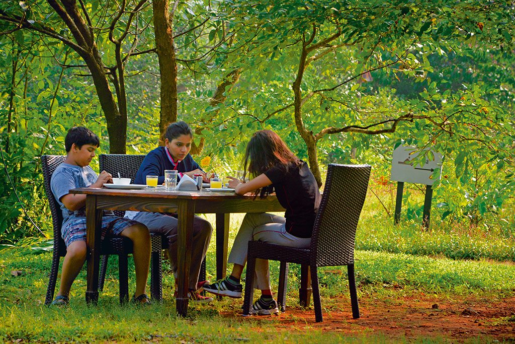 A tree-shaded grassy area makes for a perfect breakfast spot. Photo: Niloufer Venkatraman