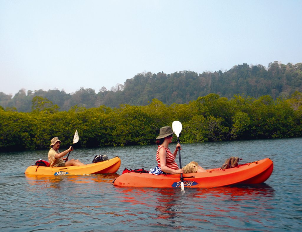 Kayaking Havelock Island Mangroves