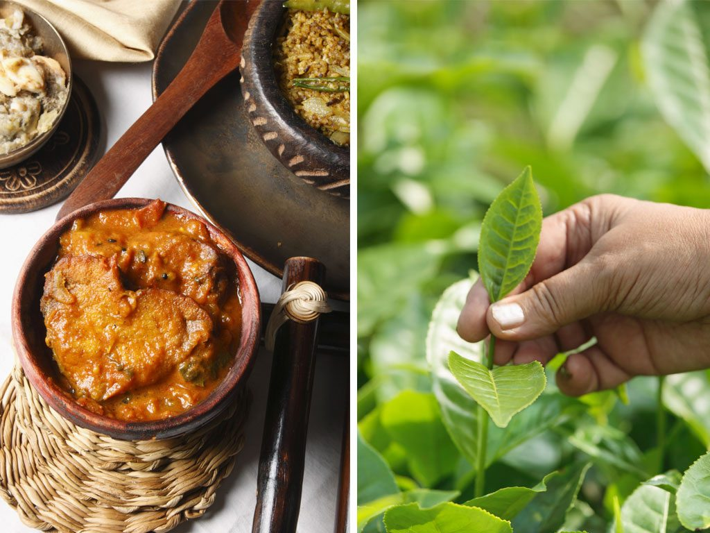 The Northeast is full of culinary treasures, whether it's the region's famous tea (right) or more homely preparations like tenga (left), a sour curry generally made with fish. Photo: CSP_MBahuguna/Fotosearch LBRF/Dinodia (food), Dinodia/Dinodia Photo RF (tea leaves)
