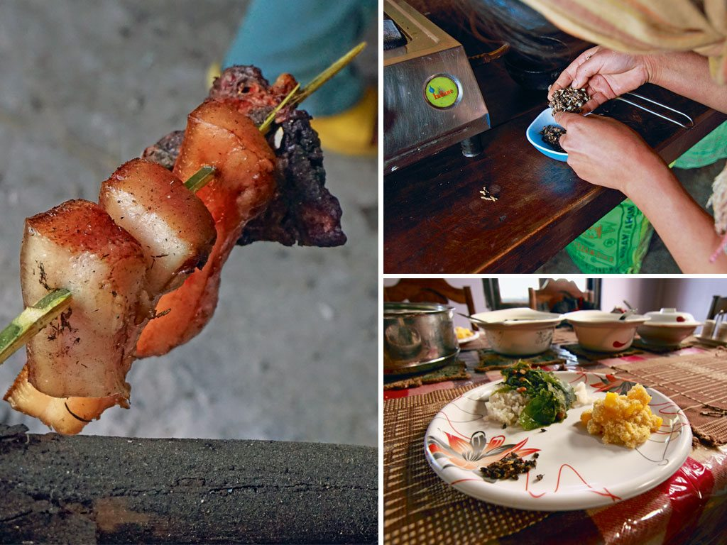 Pork and wood-borer insects in Nagaland