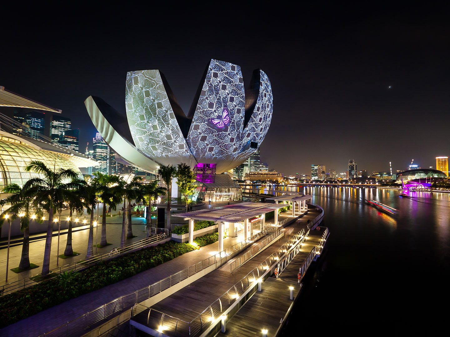 ArtScience Museum Marina Bay Sands Singapore