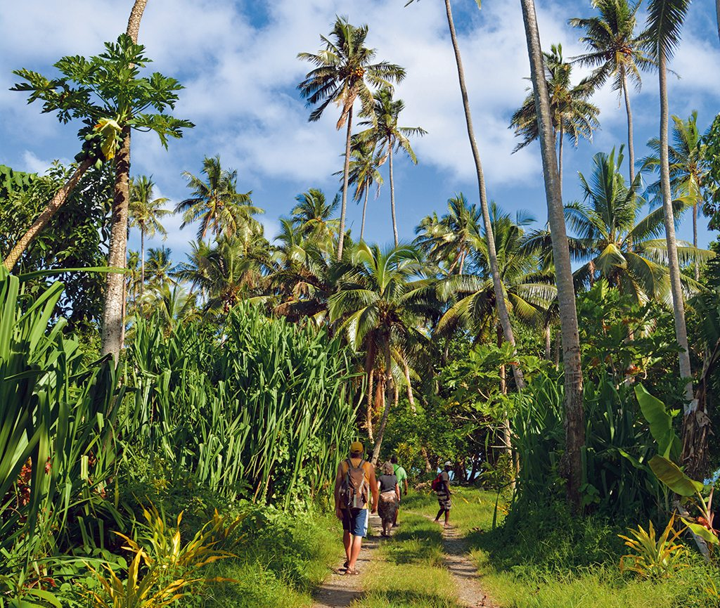 The Lavena Coastal Walk on Taveuni Island goes through tropical jungle, past waterfalls, and along the beach. Photo: Niloufer Venkatraman