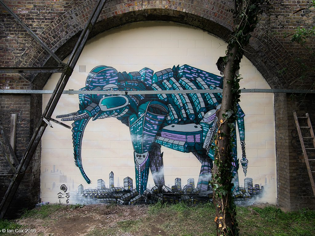 Asian elephant, andy council, ian cox