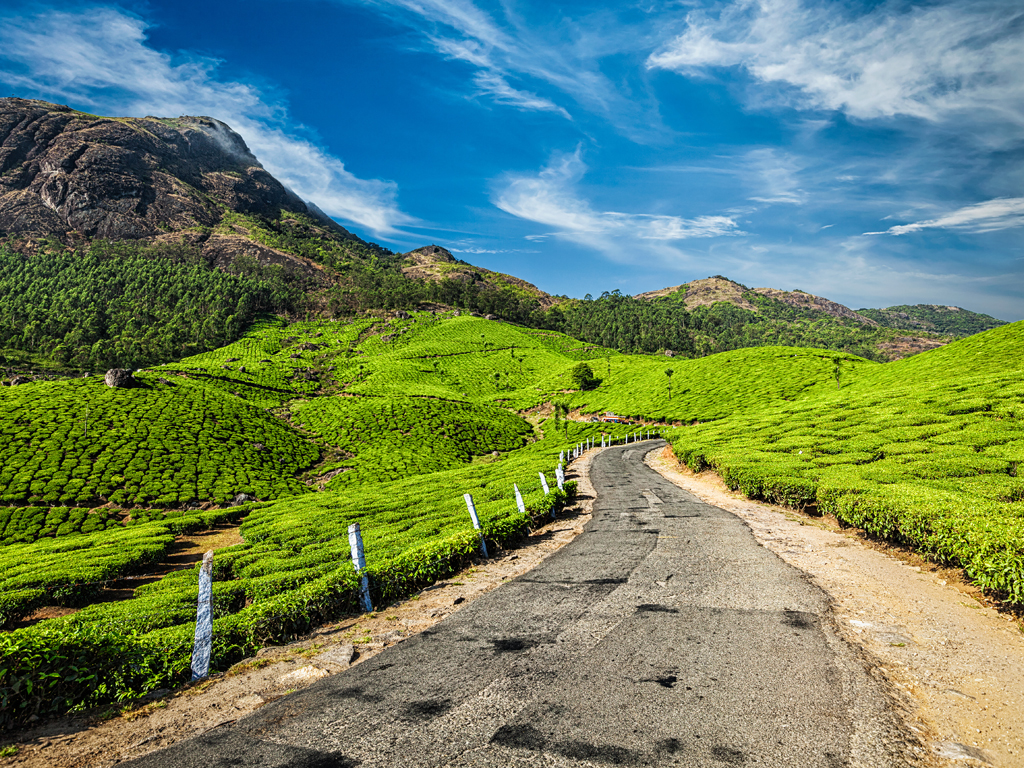 Munnar Roads. Photo courtesy: Dmitry Rukhlenko/Shutterstock