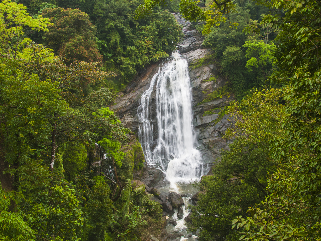 Waterfall in Munnar. Photo courtesy: CRS Photo/ Shutterstock