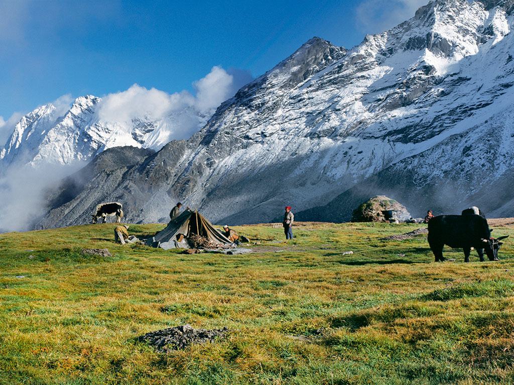 Saldima Meadows in Nepal