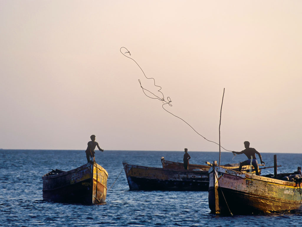 Local fishermen cast their net for the day's fresh catch. Photography by: Indiapictures/Contributor/Gettyimages