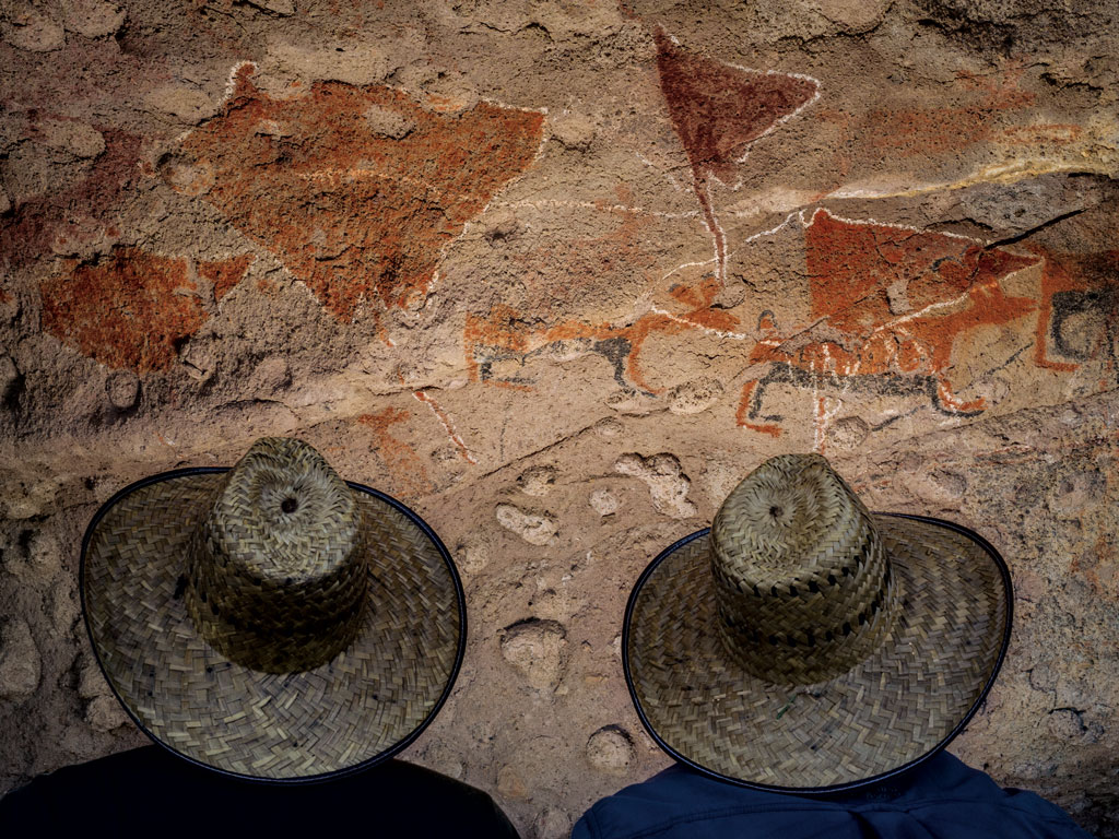 Ocean life figures prominently in Baja history. Pre-­Hispanic cultures painted rays, sharks, dolphins, tuna, and seals in the remote canyons of the Sierra de San Francisco mountain range.
