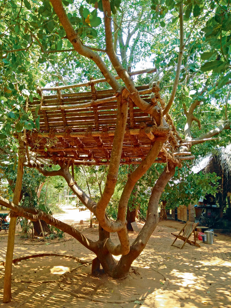 Auroville has many tree houses, perfect for lounging with a book or staring at the sky.